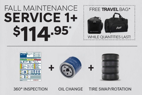 $114.95 – FALL MAINTENANCE SERVICE 1+ WITH A FREE* TRAVEL BAG